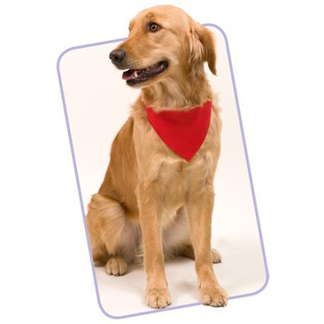 Bandanas para perros Roco