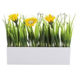 Planta decorativa Botania