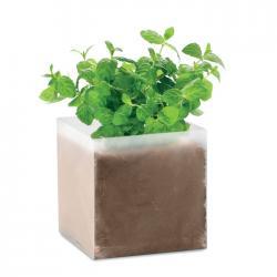 Bolsa semillas de menta Mint