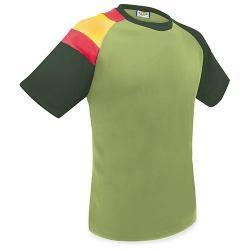 Camiseta bandera d&f ka
