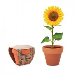 Juego de macetas terracota Sunflower