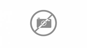 DIGITAL W1 (-5  cm2)-Zona blanca ancha del peine