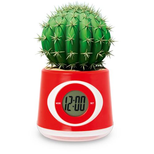 Reloj macetero Zelmo